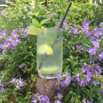 Come in tonight for a cool Mojito or your favorite cocktail at the bar or on our patio.